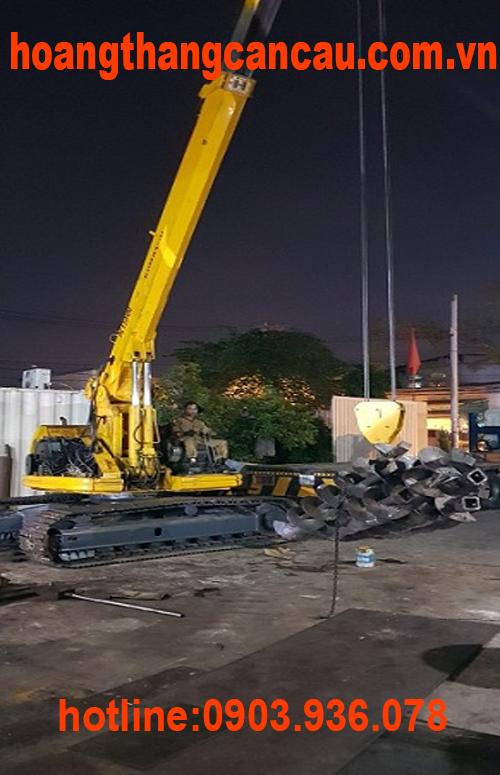 xe đào gắn cẩu 8 tấn